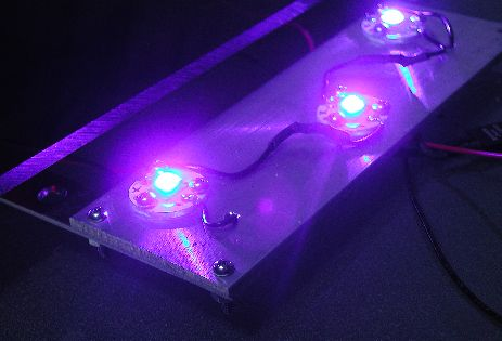 Close-up of blue LEDs
