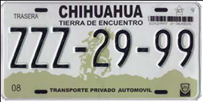 Chihuahua License Plate