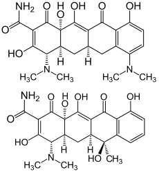 Minocycline and tetracycline structure
