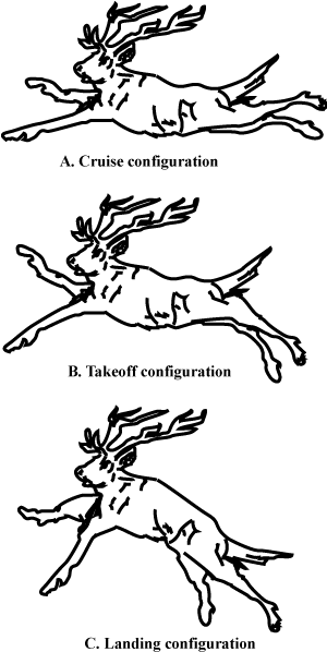 Airfoil configurations for reindeer