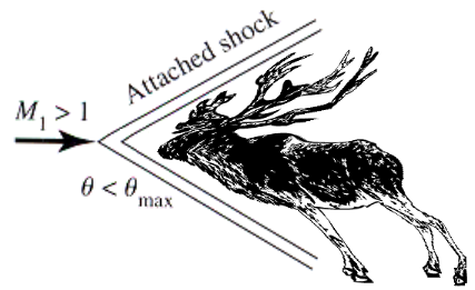 Shockwave for reindeer at Mach 1