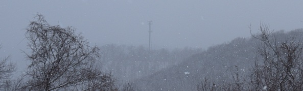 Snow and cell tower