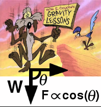 Wiley Coyote gravity lessons